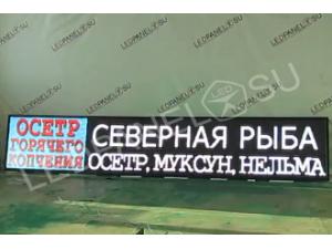 """Комбинированная видеовывеска """"Живая рыба"""" p10 104х600"""
